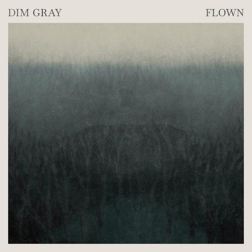 Dim-Grey_cover-e1619181470611